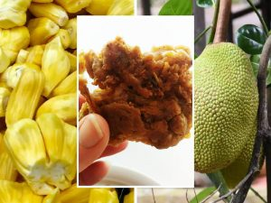 Jackfruit: Le savoureux imposteur!